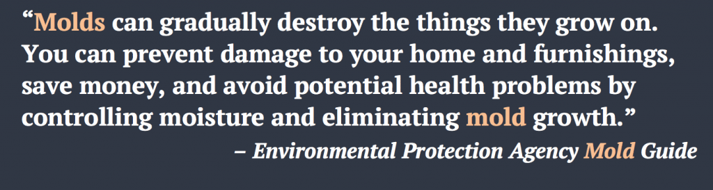 Orange County Mold Removal Quote - EPA